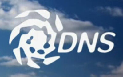 DNS Server – Gestione dei record, quando e perchè averlo locale e non gestito da terzi.